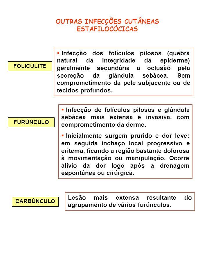 FOLICULITE OUTRAS INFECÇÕES CUTÂNEAS ESTAFILOCÓCICAS Infecção dos folículos pilosos (quebra natural da integridade da epiderme) geralmente secundária