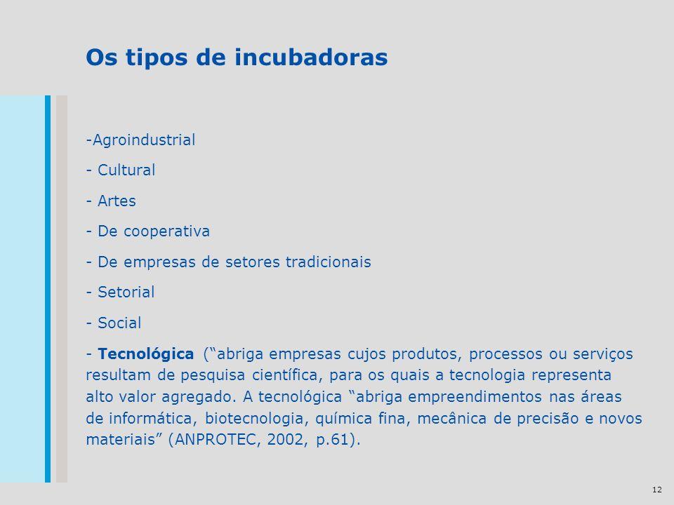 12 Os tipos de incubadoras -Agroindustrial - Cultural - Artes - De cooperativa - De empresas de setores tradicionais - Setorial - Social - Tecnológica