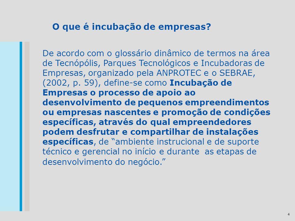 4 O que é incubação de empresas.