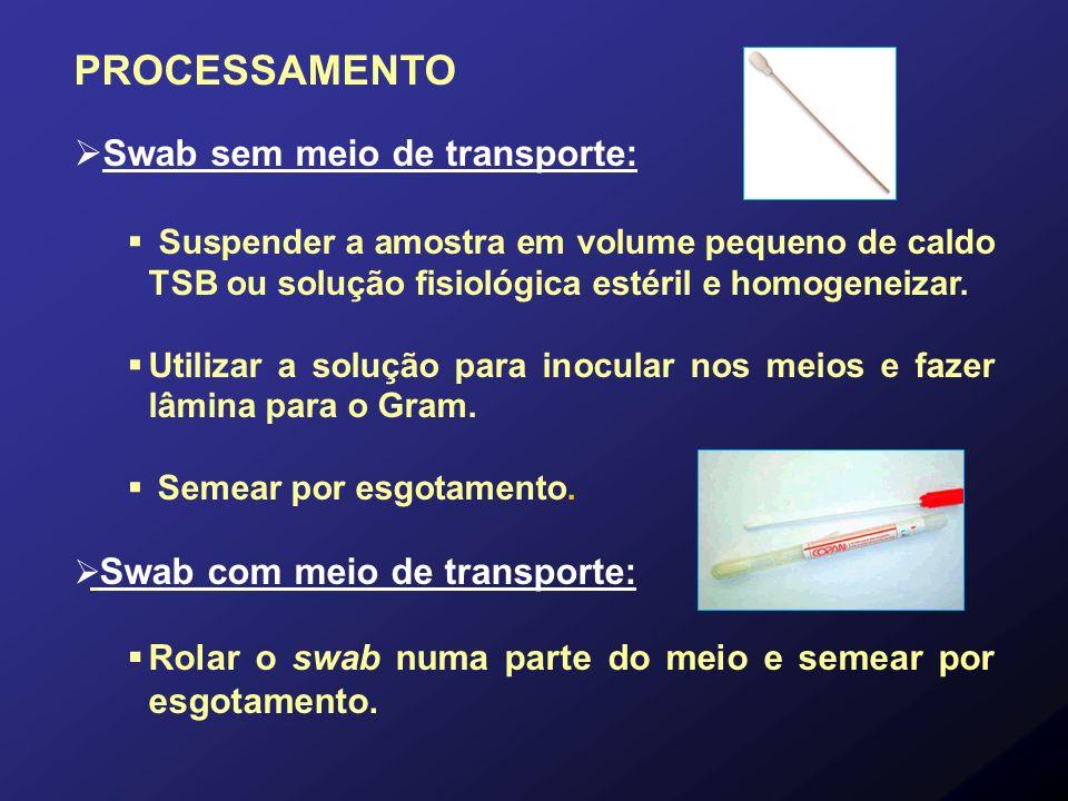 PROCESSAMENTO Swab sem meio de transporte: Suspender a amostra em volume pequeno de caldo TSB ou solução fisiológica estéril e homogeneizar. Utilizar