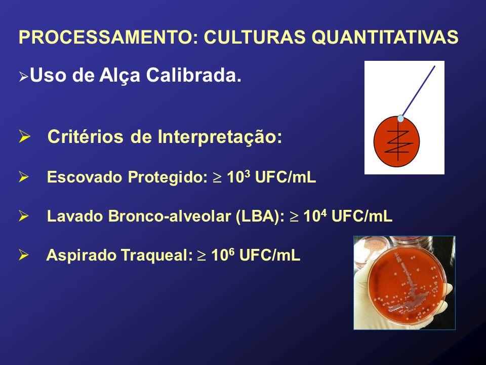 PROCESSAMENTO: CULTURAS QUANTITATIVAS Uso de Alça Calibrada. Critérios de Interpretação: Escovado Protegido: 10 3 UFC/mL Lavado Bronco-alveolar (LBA):