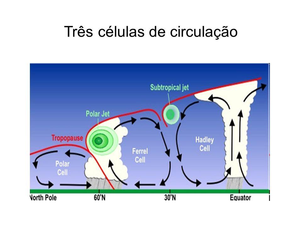 Três células de circulação