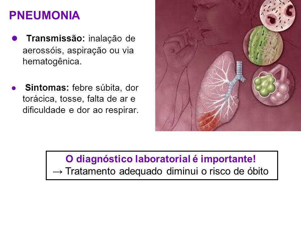 PNEUMONIA Transmissão: inalação de aerossóis, aspiração ou via hematogênica. Sintomas: febre súbita, dor torácica, tosse, falta de ar e dificuldade e