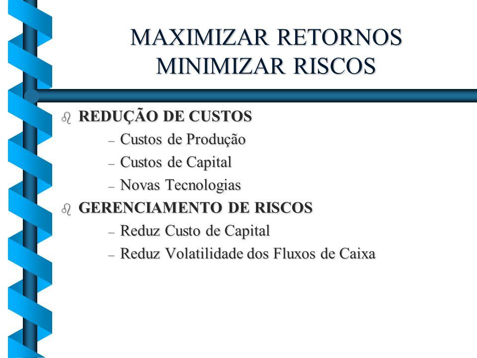MAXIMIZAR RETORNOS MINIMIZAR RISCOS b REDUÇÃO DE CUSTOS – Custos de Produção – Custos de Capital – Novas Tecnologias b GERENCIAMENTO DE RISCOS – Reduz