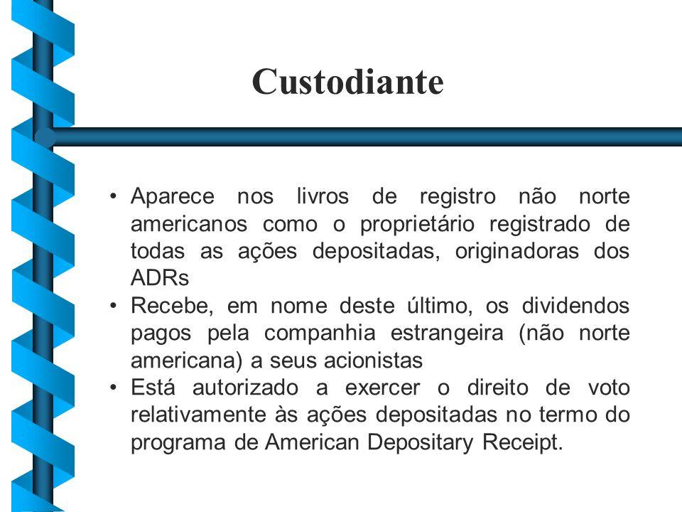 Aparece nos livros de registro não norte americanos como o proprietário registrado de todas as ações depositadas, originadoras dos ADRs Recebe, em nom