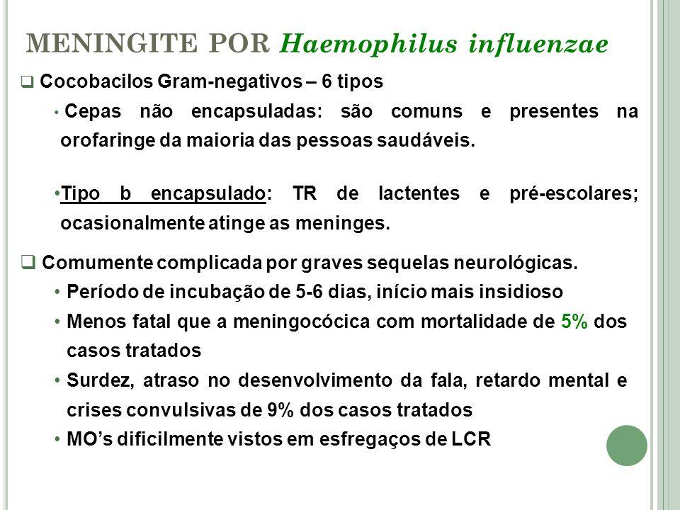 MENINGITE POR Haemophilus influenzae Cocobacilos Gram-negativos – 6 tipos Cepas não encapsuladas: são comuns e presentes na orofaringe da maioria das