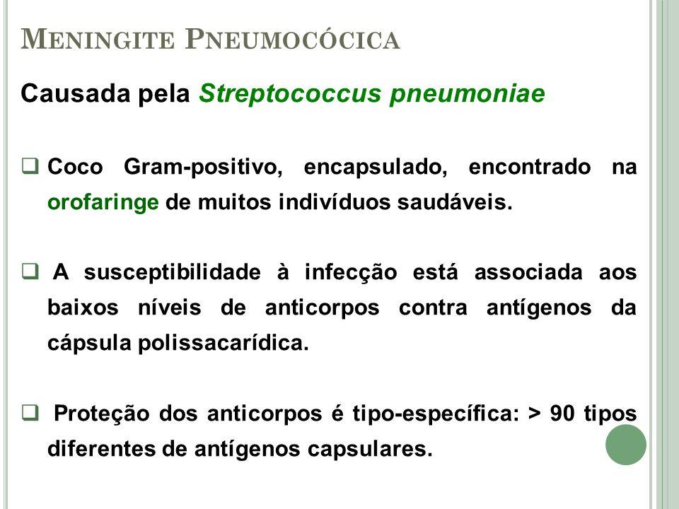 M ENINGITE P NEUMOCÓCICA Causada pela Streptococcus pneumoniae Coco Gram-positivo, encapsulado, encontrado na orofaringe de muitos indivíduos saudávei