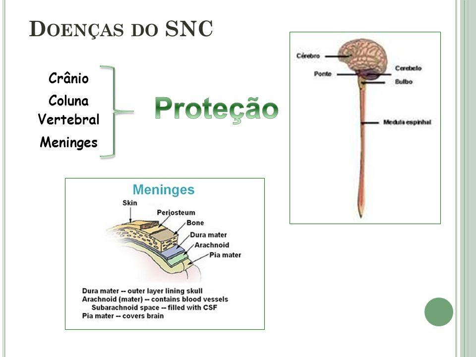 D OENÇAS DO SNC Crânio Coluna Vertebral Meninges