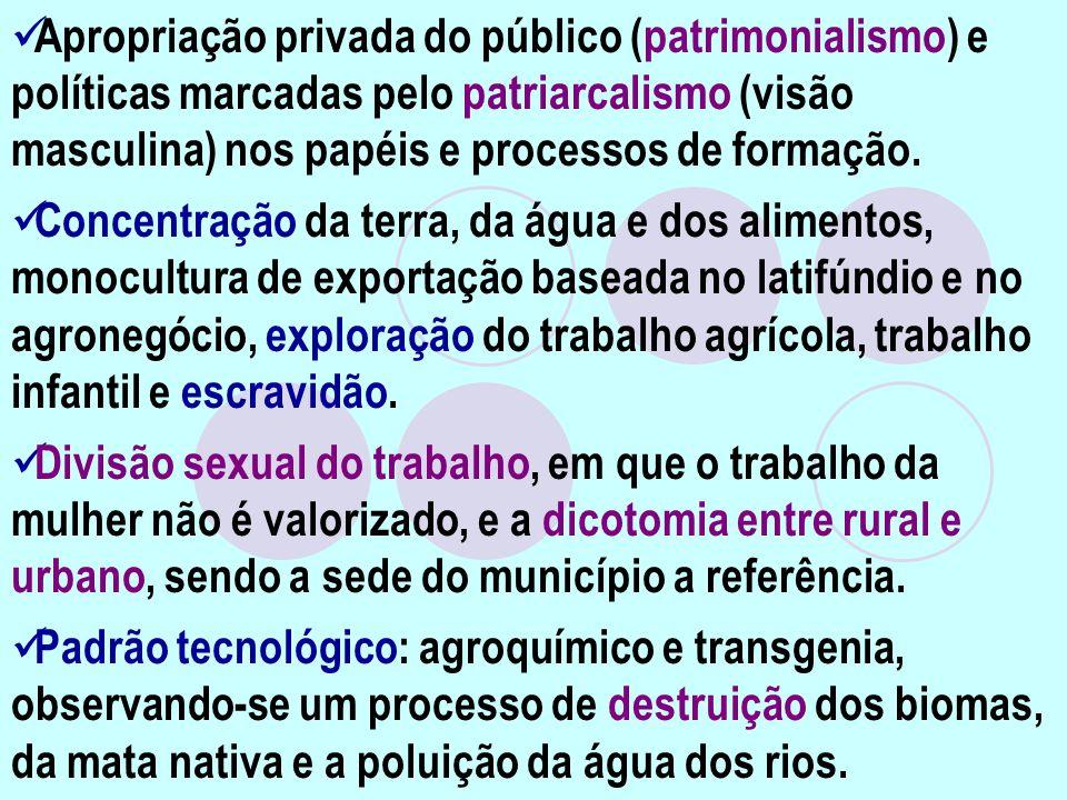 Apropriação privada do público (patrimonialismo) e políticas marcadas pelo patriarcalismo (visão masculina) nos papéis e processos de formação. Concen