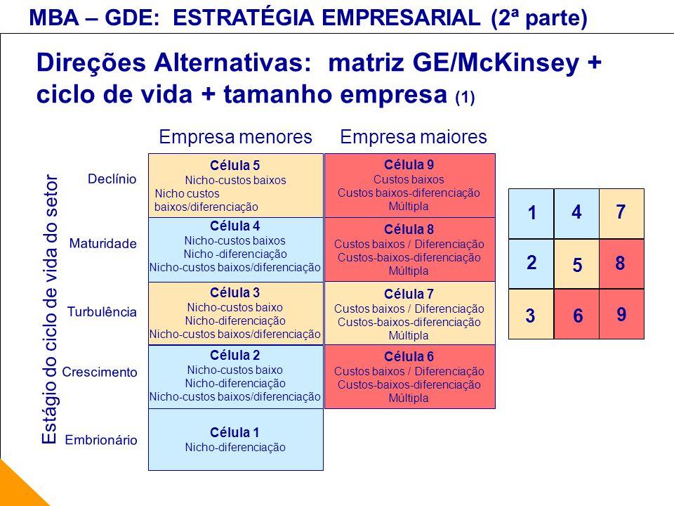 MBA – GDE: ESTRATÉGIA EMPRESARIAL (2ª parte) Direções Alternativas: matriz GE/McKinsey + ciclo de vida + tamanho empresa (1) Empresa menoresEmpresa ma