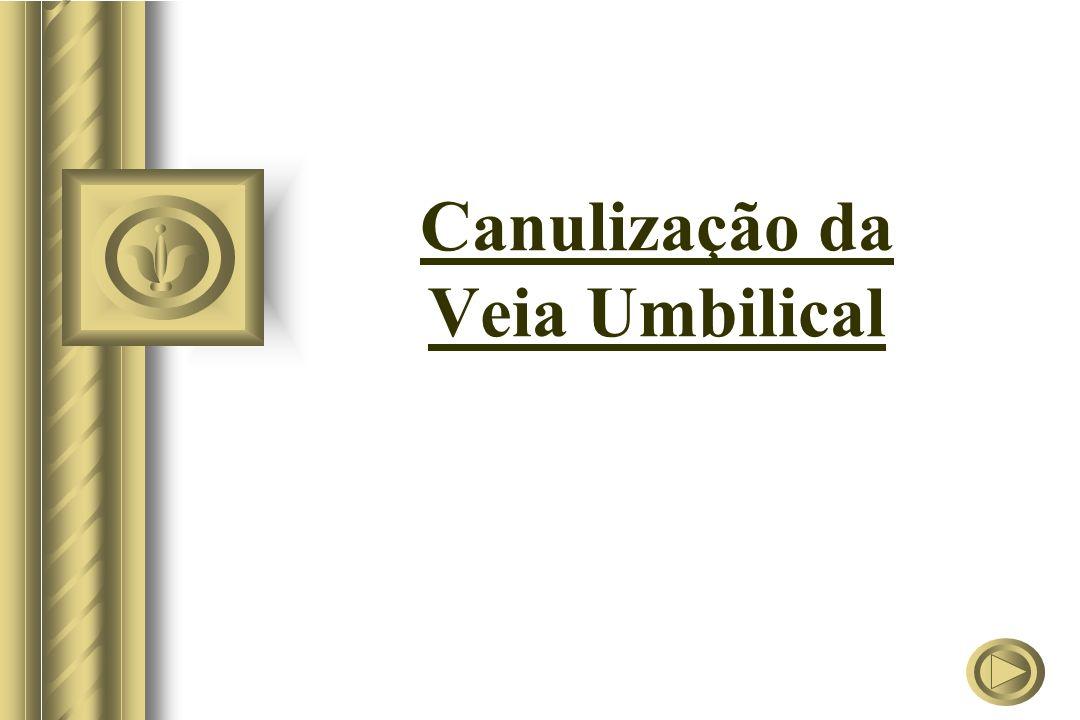 Canulização da Veia Umbilical