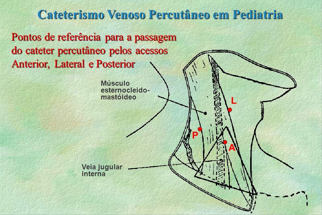 Pontos de referência para a passagem do cateter percutâneo pelos acessos Anterior, Lateral e Posterior Músculo esternocleido- mastóideo Veia jugular i