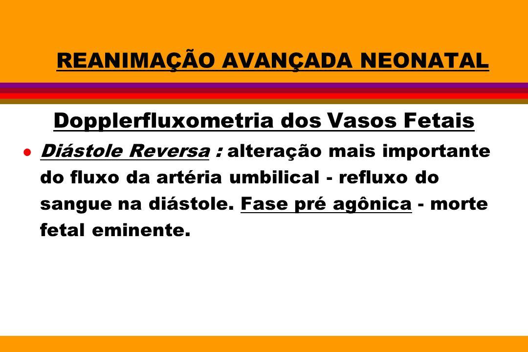 REANIMAÇÃO AVANÇADA NEONATAL Dopplerfluxometria dos Vasos Fetais l Diástole Reversa : alteração mais importante do fluxo da artéria umbilical - reflux