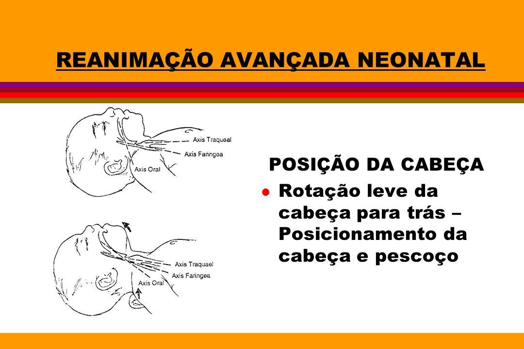 REANIMAÇÃO AVANÇADA NEONATAL POSIÇÃO DA CABEÇA l Rotação leve da cabeça para trás – Posicionamento da cabeça e pescoço