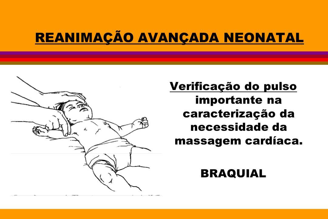REANIMAÇÃO AVANÇADA NEONATAL Verificação do pulso importante na caracterização da necessidade da massagem cardíaca. BRAQUIAL