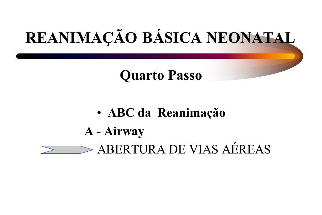 REANIMAÇÃO BÁSICA NEONATAL Quarto Passo ABC da Reanimação A - Airway ABERTURA DE VIAS AÉREAS