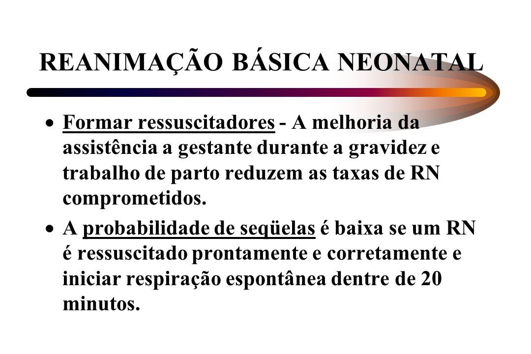 REANIMAÇÃO BÁSICA NEONATAL Formar ressuscitadores - A melhoria da assistência a gestante durante a gravidez e trabalho de parto reduzem as taxas de RN