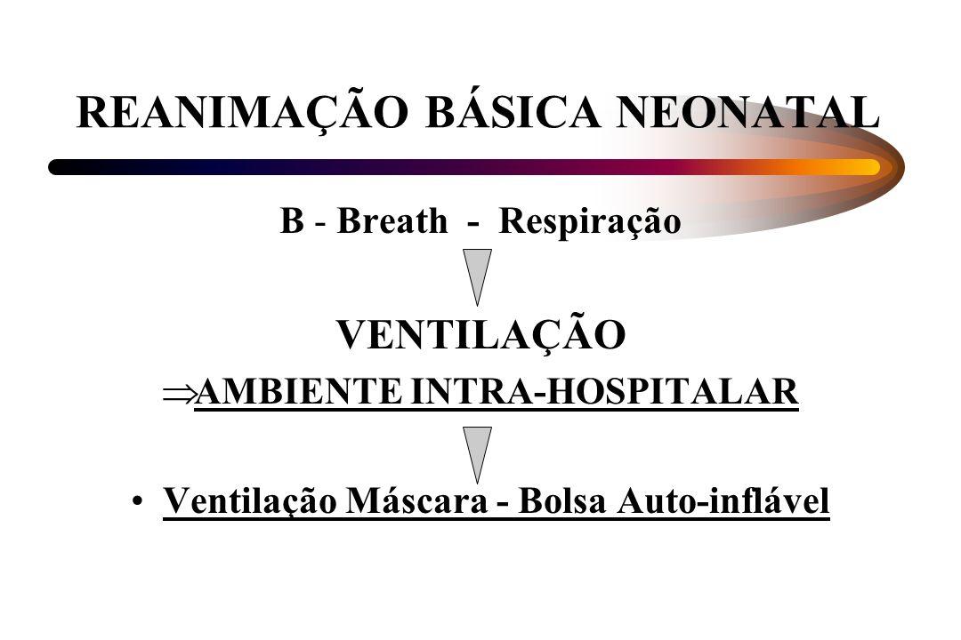 REANIMAÇÃO BÁSICA NEONATAL B - Breath - Respiração VENTILAÇÃO AMBIENTE INTRA-HOSPITALAR Ventilação Máscara - Bolsa Auto-inflável