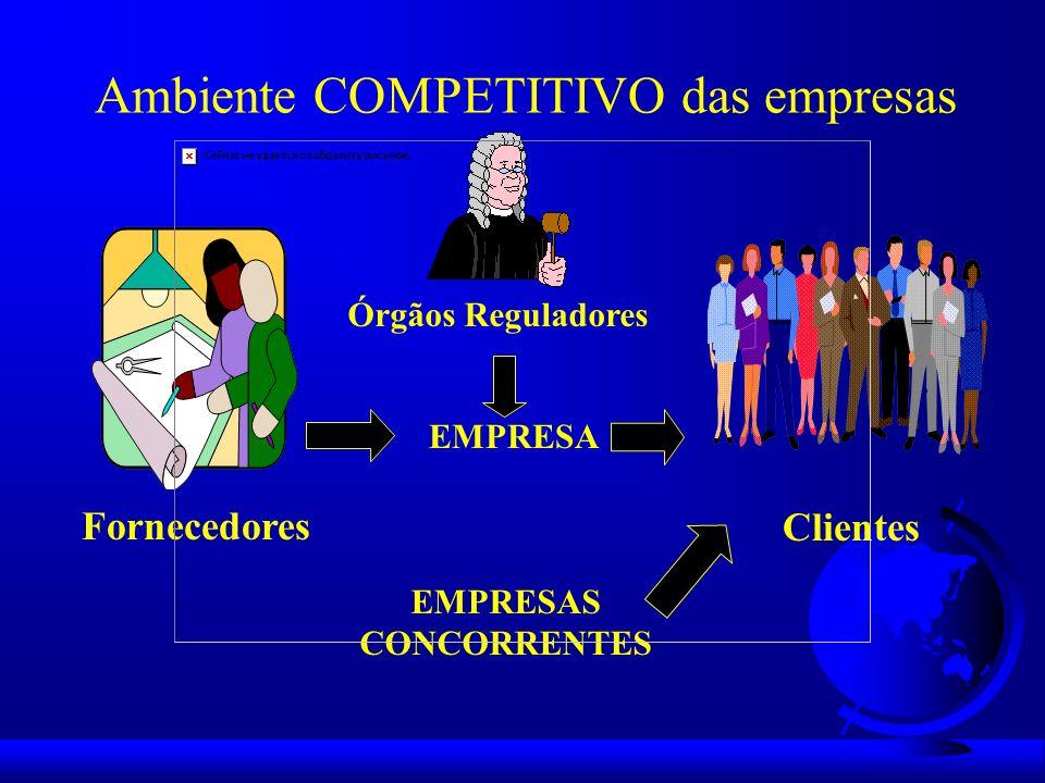 Ambiente COMPETITIVO das empresas Órgãos Reguladores EMPRESA EMPRESAS CONCORRENTES Clientes Fornecedores