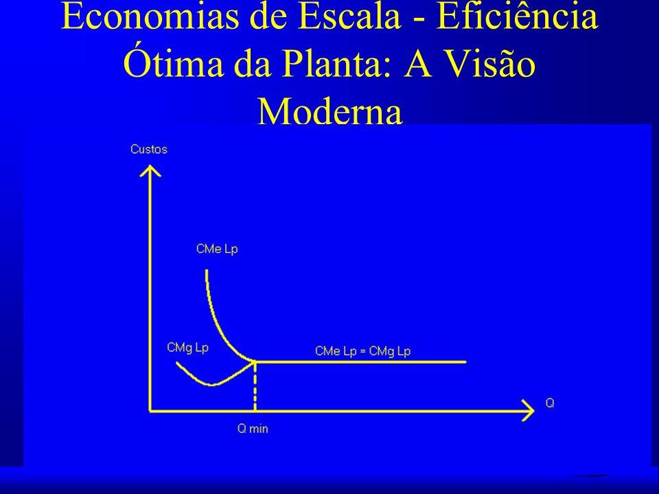 Economias de Escala - Eficiência Ótima da Planta: A Visão Moderna