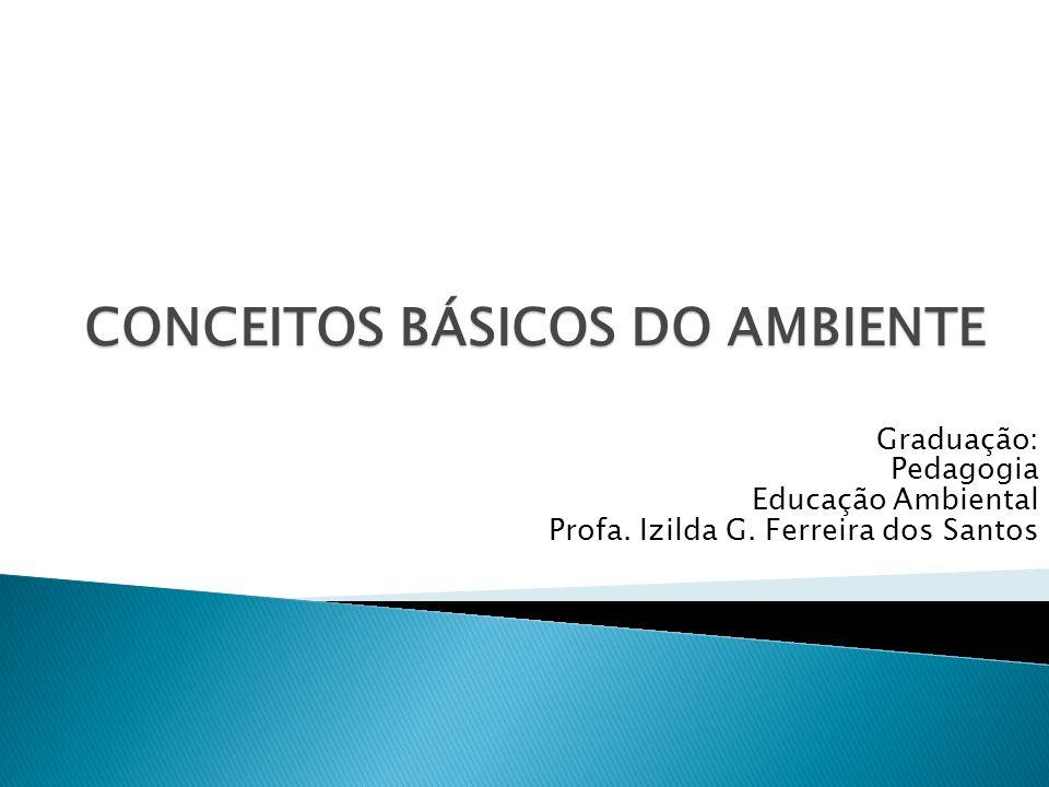 CONCEITOS BÁSICOS DO AMBIENTE Graduação: Pedagogia Educação Ambiental Profa. Izilda G. Ferreira dos Santos