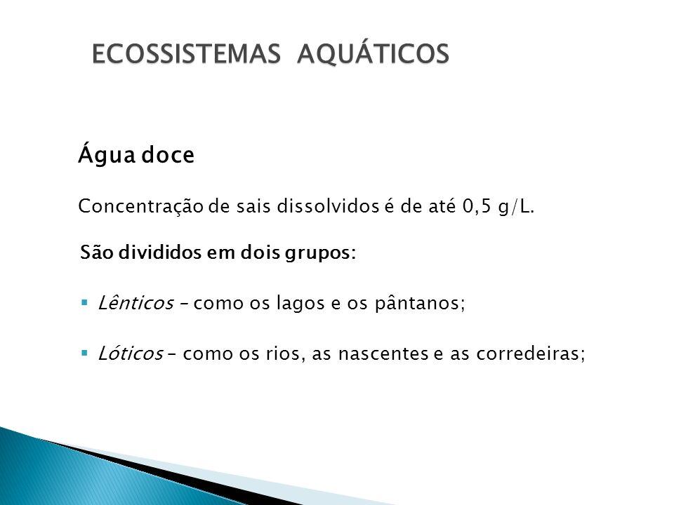 Água doce Concentração de sais dissolvidos é de até 0,5 g/L. São divididos em dois grupos: Lênticos – como os lagos e os pântanos; Lóticos – como os r