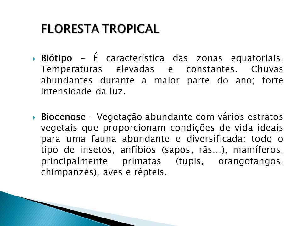 Biótipo – É característica das zonas equatoriais. Temperaturas elevadas e constantes. Chuvas abundantes durante a maior parte do ano; forte intensidad