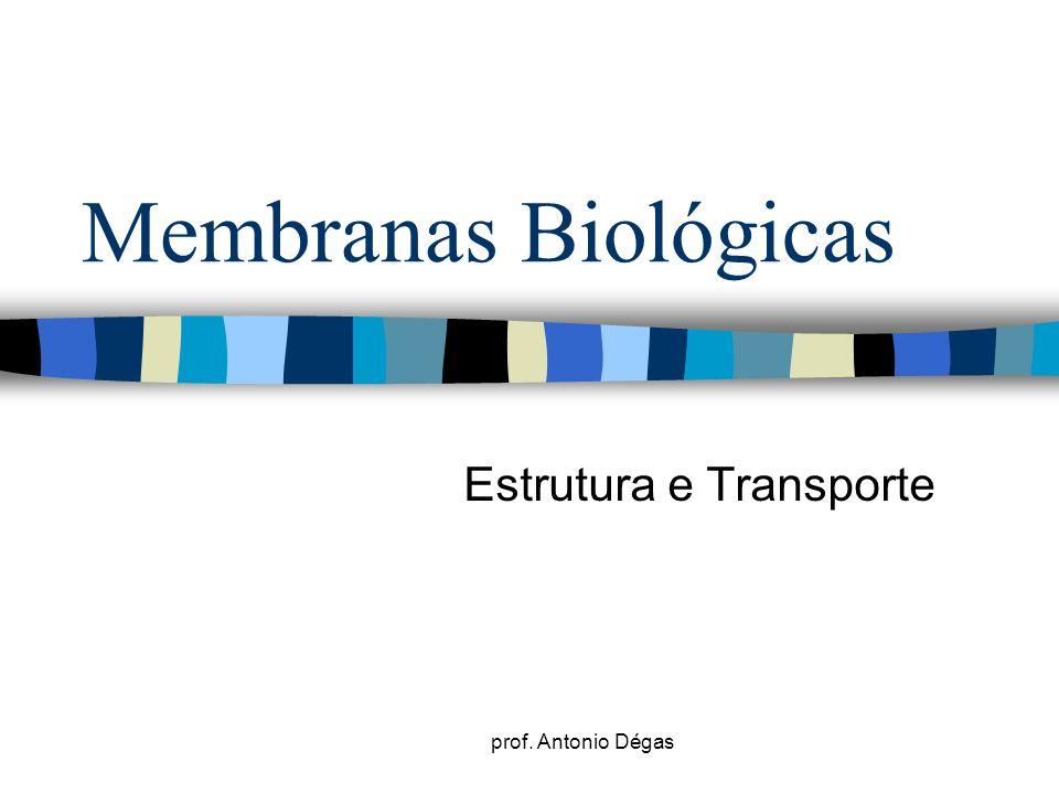 prof. Antonio Dégas Membranas Biológicas Estrutura e Transporte