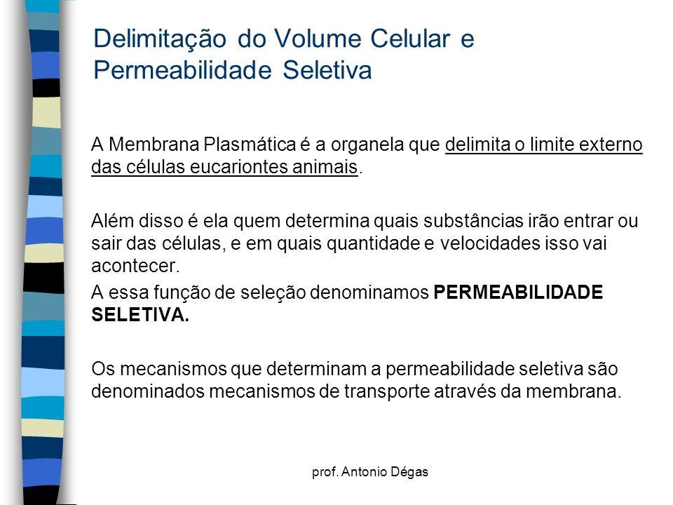 prof. Antonio Dégas Delimitação do Volume Celular e Permeabilidade Seletiva A Membrana Plasmática é a organela que delimita o limite externo das célul