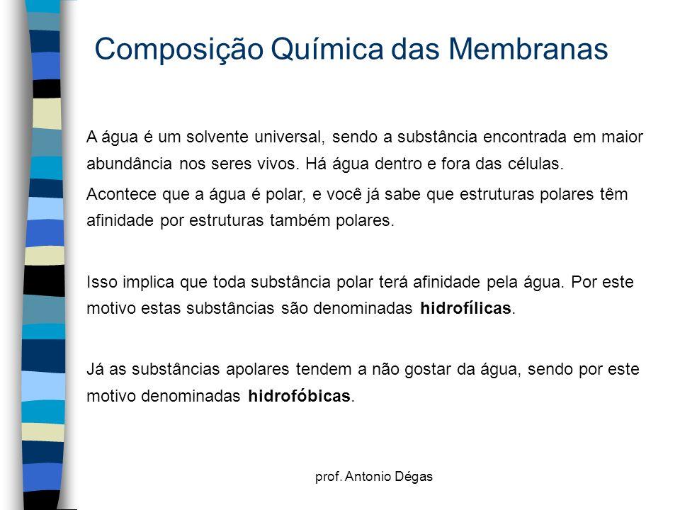 prof. Antonio Dégas Composição Química das Membranas A água é um solvente universal, sendo a substância encontrada em maior abundância nos seres vivos
