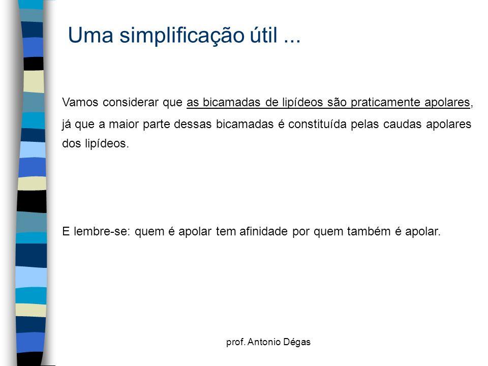 prof. Antonio Dégas Uma simplificação útil... Vamos considerar que as bicamadas de lipídeos são praticamente apolares, já que a maior parte dessas bic