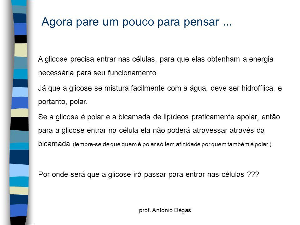 prof. Antonio Dégas Agora pare um pouco para pensar... A glicose precisa entrar nas células, para que elas obtenham a energia necessária para seu func