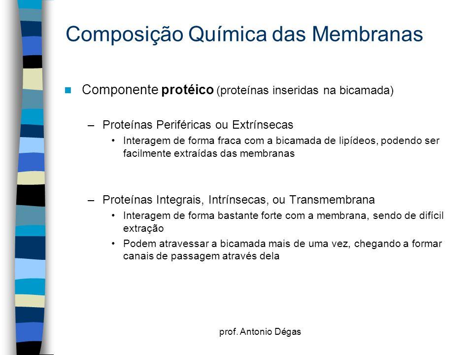 prof. Antonio Dégas Composição Química das Membranas Componente protéico (proteínas inseridas na bicamada) –Proteínas Periféricas ou Extrínsecas Inter