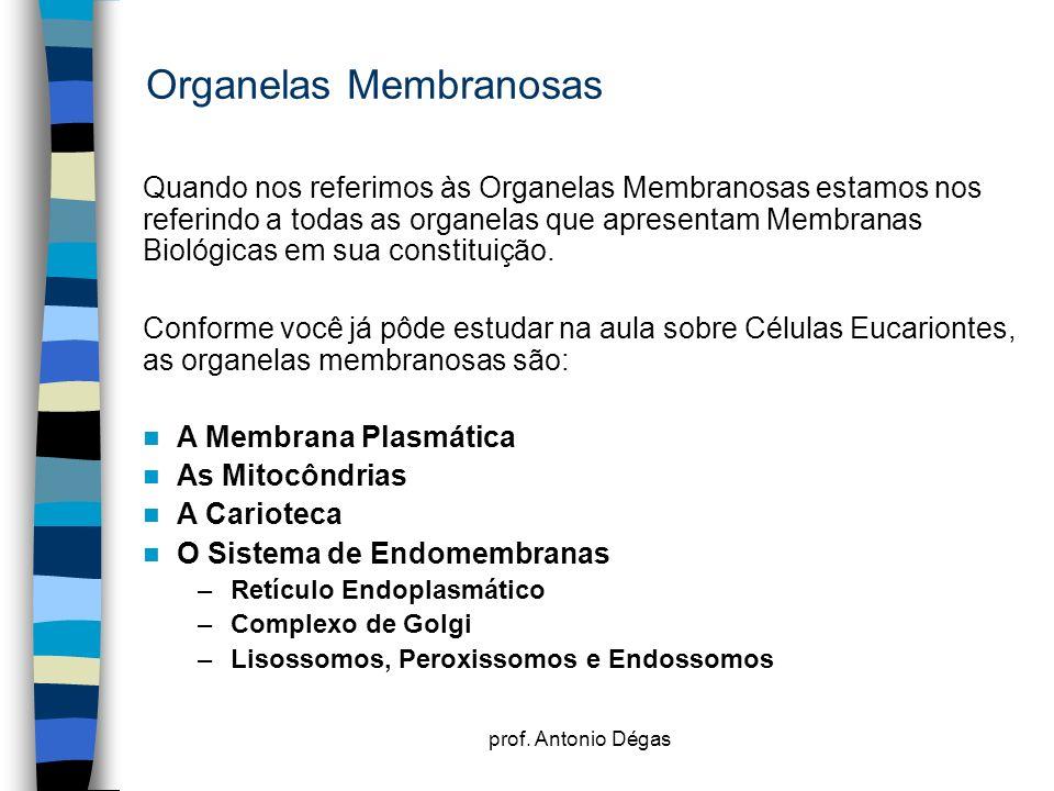 prof. Antonio Dégas Organelas Membranosas Quando nos referimos às Organelas Membranosas estamos nos referindo a todas as organelas que apresentam Memb