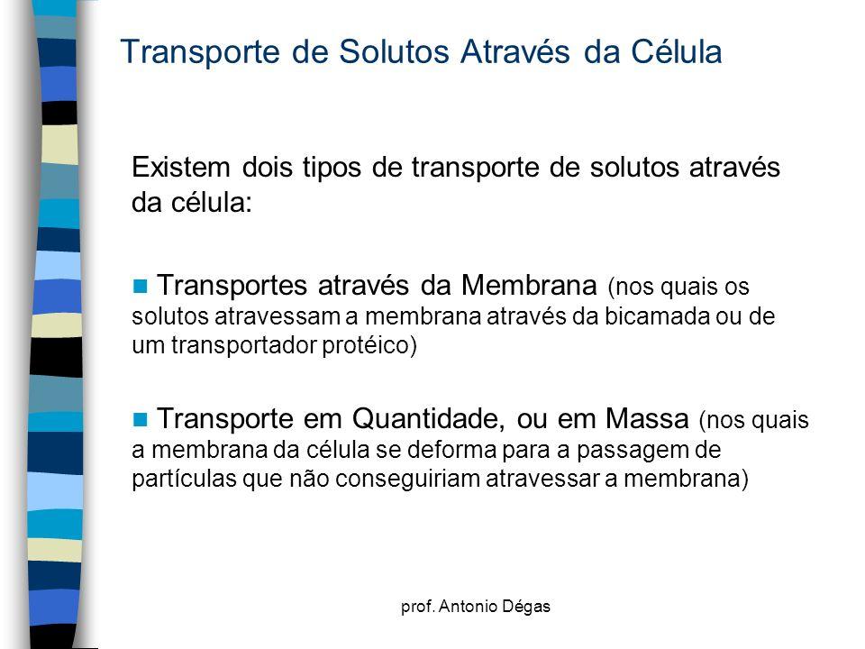 prof. Antonio Dégas Transporte de Solutos Através da Célula Existem dois tipos de transporte de solutos através da célula: Transportes através da Memb