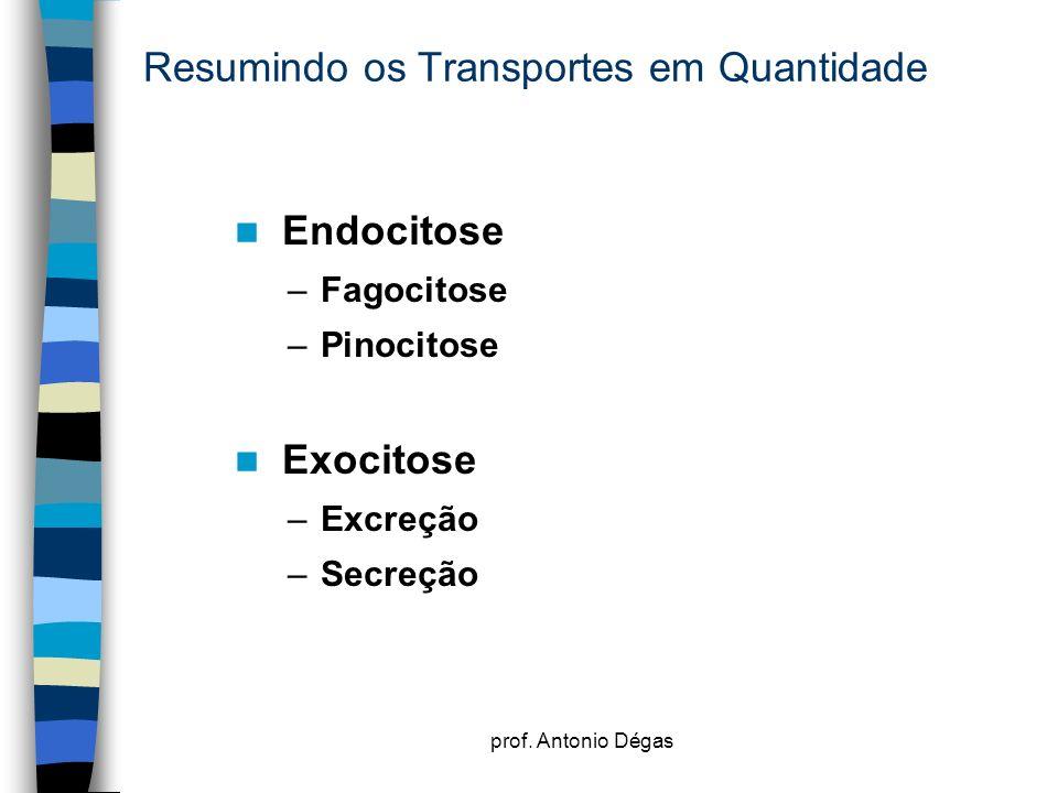 prof. Antonio Dégas Resumindo os Transportes em Quantidade Endocitose –Fagocitose –Pinocitose Exocitose –Excreção –Secreção