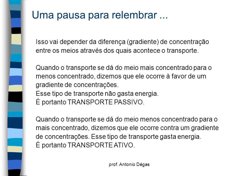 prof. Antonio Dégas Uma pausa para relembrar... Isso vai depender da diferença (gradiente) de concentração entre os meios através dos quais acontece o