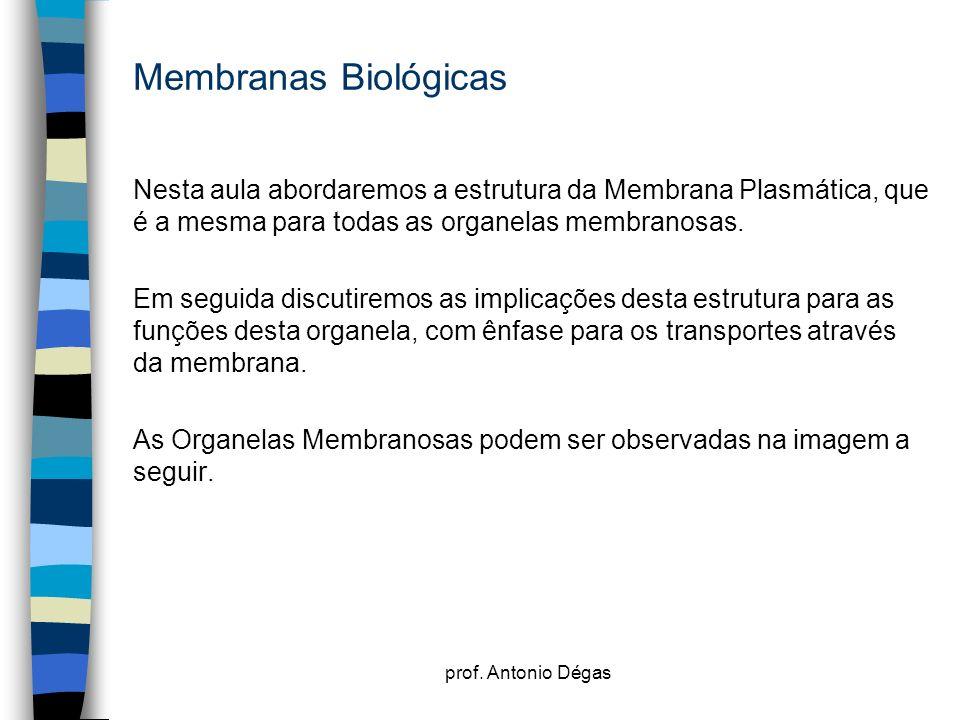 prof. Antonio Dégas Membranas Biológicas Nesta aula abordaremos a estrutura da Membrana Plasmática, que é a mesma para todas as organelas membranosas.