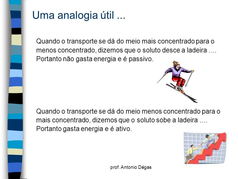 prof. Antonio Dégas Uma analogia útil... Quando o transporte se dá do meio mais concentrado para o menos concentrado, dizemos que o soluto desce a lad