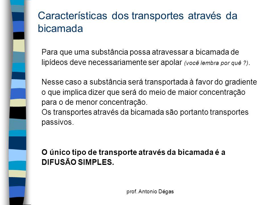 prof. Antonio Dégas Características dos transportes através da bicamada Para que uma substância possa atravessar a bicamada de lipídeos deve necessari