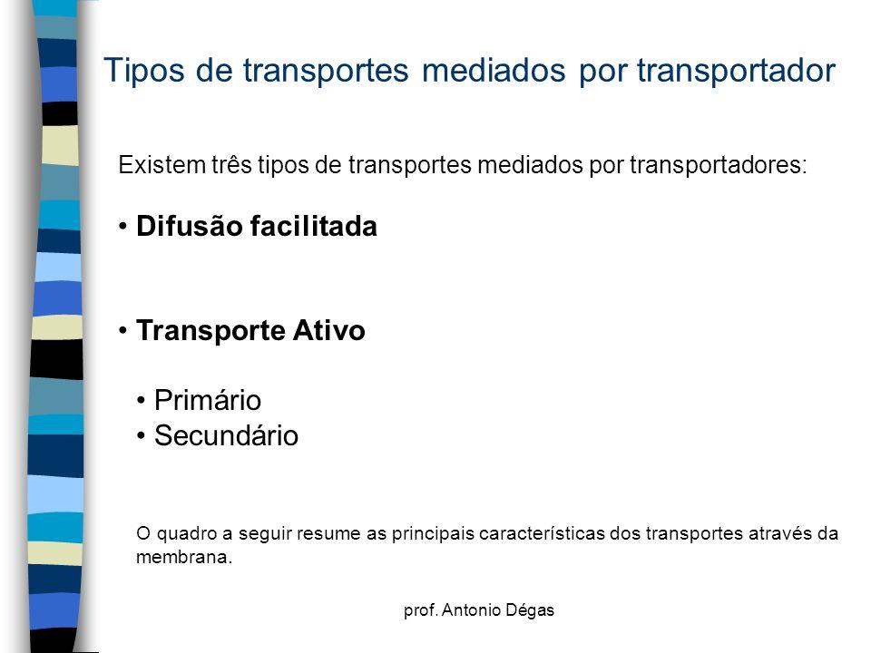 prof. Antonio Dégas Tipos de transportes mediados por transportador Existem três tipos de transportes mediados por transportadores: Difusão facilitada