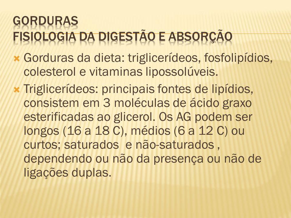 Gorduras da dieta: triglicerídeos, fosfolipídios, colesterol e vitaminas lipossolúveis.