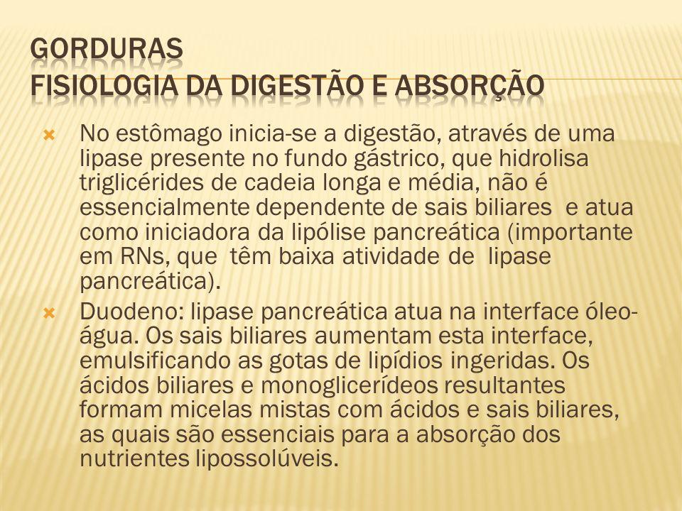 No estômago inicia-se a digestão, através de uma lipase presente no fundo gástrico, que hidrolisa triglicérides de cadeia longa e média, não é essencialmente dependente de sais biliares e atua como iniciadora da lipólise pancreática (importante em RNs, que têm baixa atividade de lipase pancreática).
