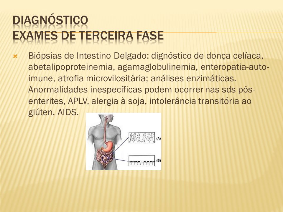 Biópsias de Intestino Delgado: dignóstico de donça celíaca, abetalipoproteinemia, agamaglobulinemia, enteropatia-auto- imune, atrofia microvilositária; análises enzimáticas.