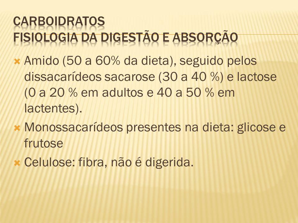 Amido (50 a 60% da dieta), seguido pelos dissacarídeos sacarose (30 a 40 %) e lactose (0 a 20 % em adultos e 40 a 50 % em lactentes).