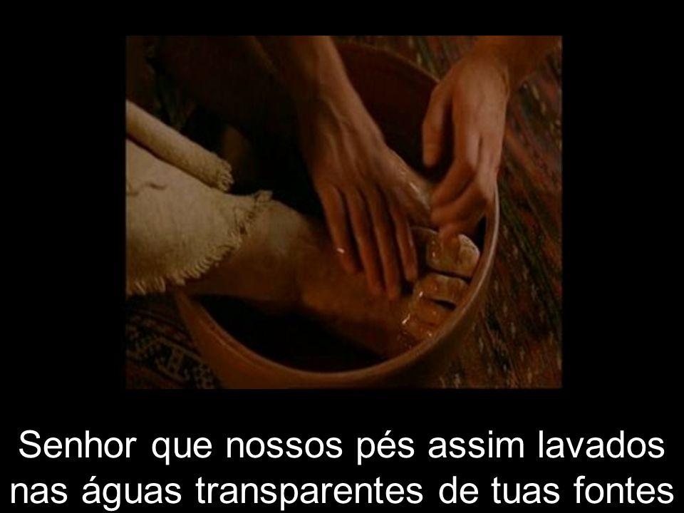 Senhor que nossos pés assim lavados nas águas transparentes de tuas fontes