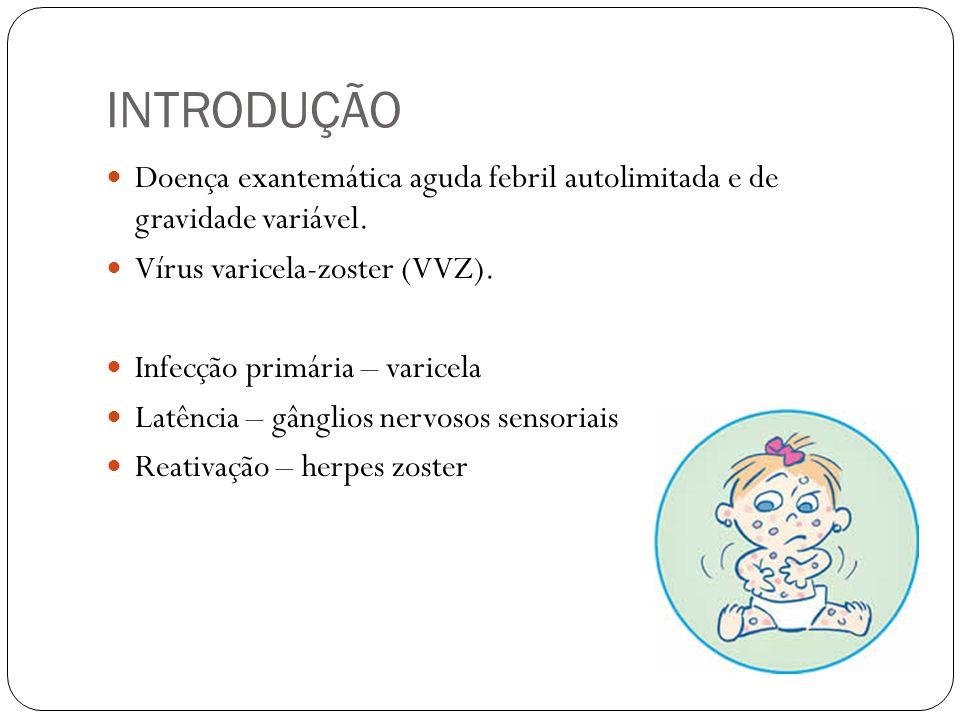 INTRODUÇÃO Doença exantemática aguda febril autolimitada e de gravidade variável. Vírus varicela-zoster (VVZ). Infecção primária – varicela Latência –