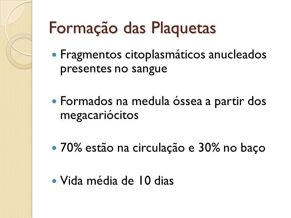 Formação das Plaquetas Fragmentos citoplasmáticos anucleados presentes no sangue Formados na medula óssea a partir dos megacariócitos 70% estão na cir
