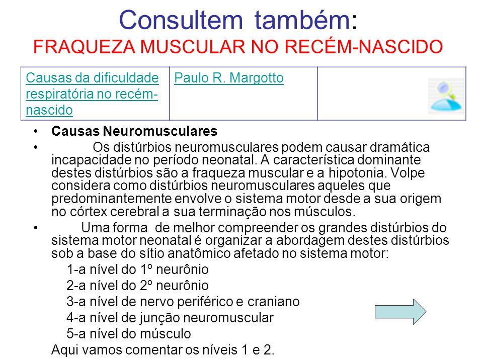 Consultem também: FRAQUEZA MUSCULAR NO RECÉM-NASCIDO Causas da dificuldade respiratória no recém- nascido Paulo R. Margotto Causas Neuromusculares Os