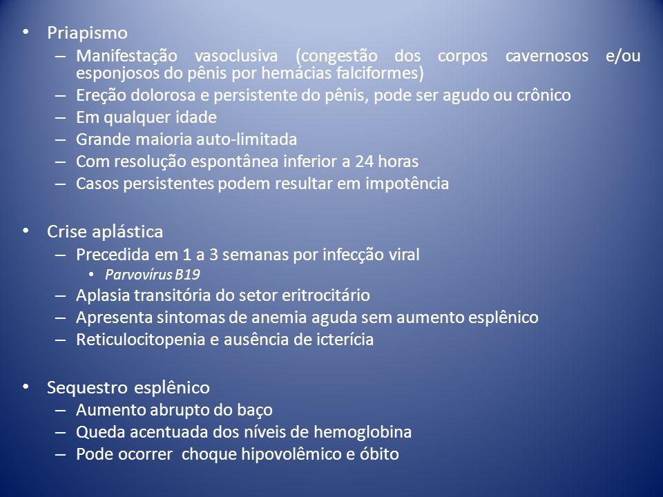 Priapismo – Manifestação vasoclusiva (congestão dos corpos cavernosos e/ou esponjosos do pênis por hemácias falciformes) – Ereção dolorosa e persisten